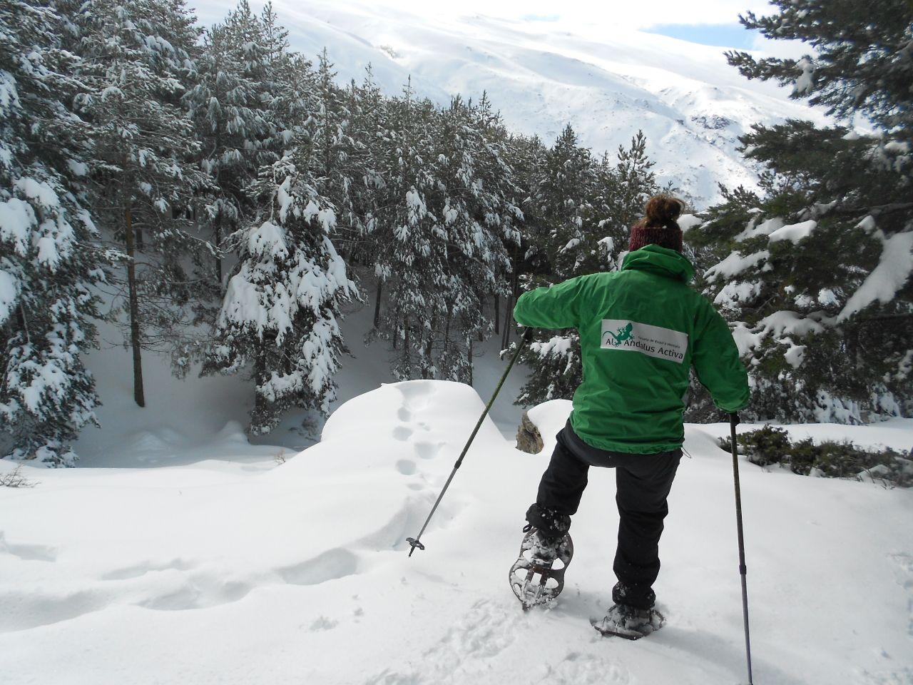 raquetas de nieve en sierra nevada 2
