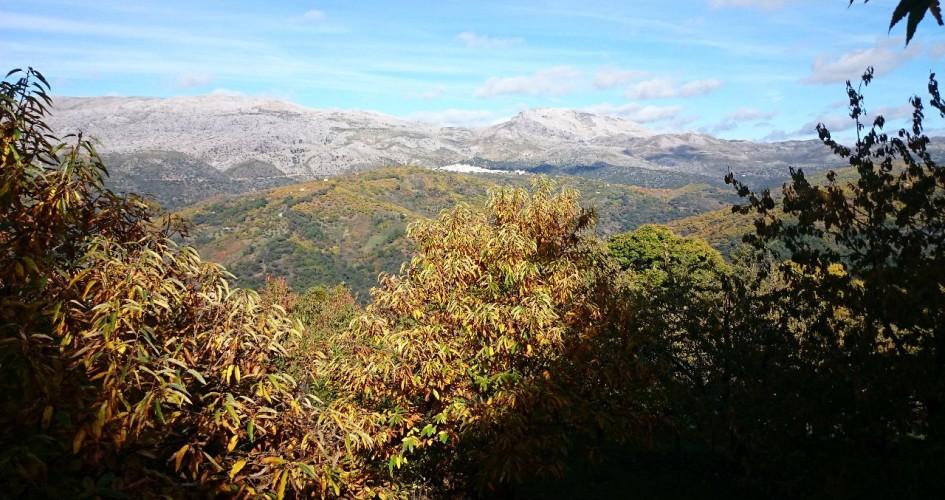 senderismo en el valle del genal en otoño
