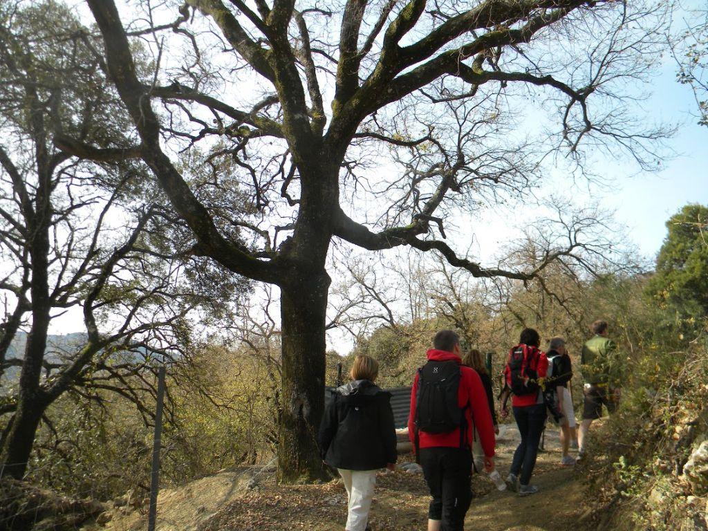 senderismo valle del genal (2)